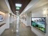 zoo-corridor-wide-art-web